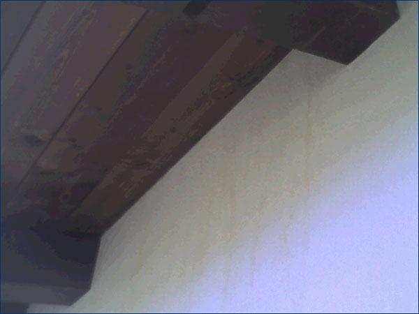 Infiltrazione d'acqua esterna su Abitazione con Cappotto